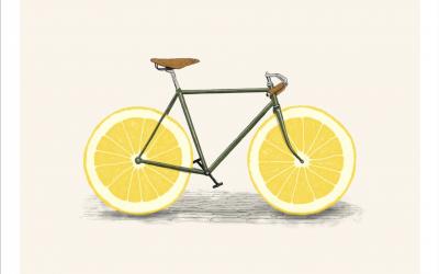 The Lemon Theory
