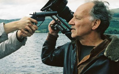The Herzog Way