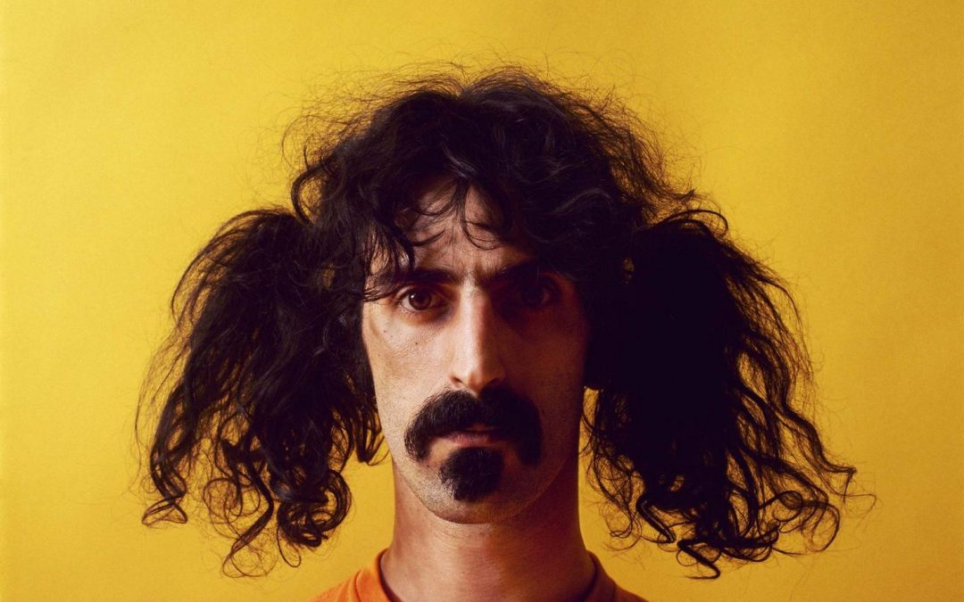 Why should you Zappa?